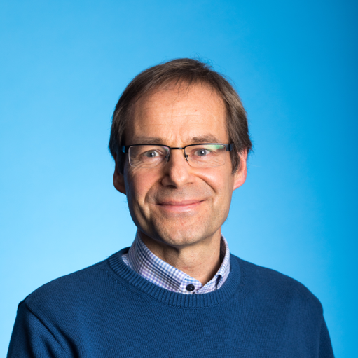 Professor Dirk Pesch